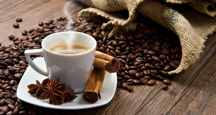 Importance of Caffeine to the Human Brain